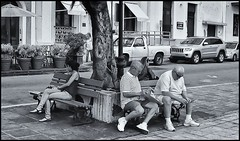 PLAZA COLON (Samy Collazo) Tags: street people bench calle gente puertorico streetphotography sanjuan bancos chinon plazacolon callesanfrancisco cvs400 autochinon50mmf19