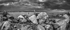 De paseo desde Guadalmar al Blanco y negro (Jose Mara Ruiz) Tags: sea espaa white fish black blanco clouds mar andaluca spain negro nubes pescador andalusa bestcapturesaoi cruzadasi