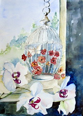 White orchids, by Sandra S. - DSC03021 (Dona Mincia) Tags: stilllife white orchid flower art window watercolor painting paper arte flor cage study janela branca pintura orqudea aquarela gaiola naturezamorta