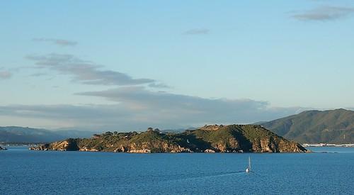 Matiu Somes Island
