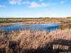 Mar de Castilla (cvielba) Tags: laguna palencia fuentesdenava