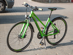 _P1110114_cut (daniel kuhne) Tags: bike frog frosch fahrrad panasonicgf1 alltagsrad olympus45mmf18 dailywhore