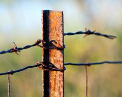 Fence Post bokeh (hz536n/George Thomas) Tags: rural fence rust bokeh michigan rusty rusted canon5d nik rusting upnorth prescott 2016 ef300mmf4lisusm