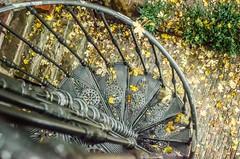 cast_garden_ghisa_giardino_giommi_iron_outside_scala_staircase_1_risultato (Made by Giommi) Tags: garden outside iron cast staircase scala giardino ghisa giommi