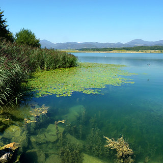 Velenje lake - Jewels of nature