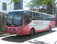 Dagupan Bus D209 (Next Base II ) Tags: bus model number co inc dagupan dm11 dmmc d209