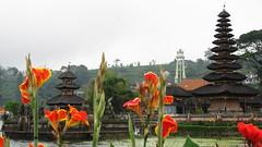 Bali 0256 (molaire2) Tags: bali indonesia island indonesie ubud denpasar balinese hindouisme