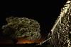 Sombras (Jose Casielles) Tags: color luz pared noche casa cielo campo texturas piedras yecla encina fotografíasjcasielles