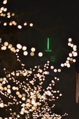 Empire State Through Bokeh (JoelZimmer) Tags: newyork fog night bokeh unionsquare 85mmf18 nikond3100