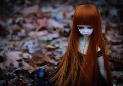 (Morgissa) Tags: girl doll valentine sd bjd dollfie aria