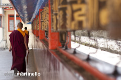 People of India (Elena Martinello) Tags: travel people india temple monk sikkim boddhism gettyimagesitalyq1 gettyimagesitalyq2 gettyimagesitalyq3