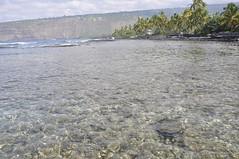 Day EIGHT - Ke'ei Beach (LaniBirch) Tags: beach keei
