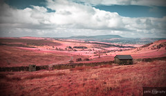 A View to Pendle Hill - Infrared (pete_tography) Tags: uk greatbritain blue red england sky horizontal clouds landscape nelson lancashire infrared british colne pendlehill burnley clitheroe fluffyclouds petecarroll padiham petercarroll flickraward petetography