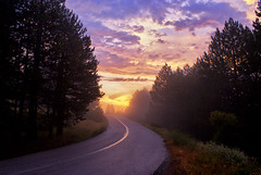 Road to Sunrise (nikolaos p.) Tags: clouds landscape outdoors landscapes greece roads sunrises forests halkidiki  poligiros