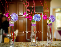 Los Gatos Flowers, Purple Floral Arrangements (Signature Bloom) Tags: pictures flowers blue wedding decorations roses flower floral design purple designer branches events sanjose images designs florist vendor siliconvalley weddings bridal decor peninsula southbay ideas hydrangeas weddingphotos arrangements sanjoseca losgatosca florists specialevents centerpieces weddingideas bridalflowers bluewedding weddingdecorations floraldesigner flowerdesign 95121 95032 weddingflorist purplewedding weddingfloral weddingvendor flowersforwedding signaturebloom losgatosflowers wwwsignaturebloomcom losgatosweddingflorist bridalflorist weddingfloristlosgatosca