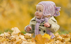 baby in autumn leaves (Shobha_Agency) Tags: autumn baby canada girl hat leaves outdoors child blueeyes 1yearold cutebaby autumncolor warmclothes yellowleaves pileofleaves outdoorportrait adorablebaby autumnportrait autumnbackground fallportrait fallbackground