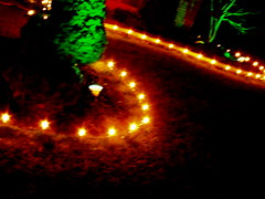 landing lights (dmixo6) Tags: christmas camera lights action 2011 dugg dmix06