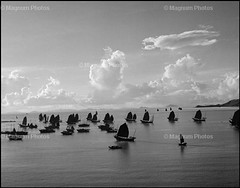 My love Photo- Boats (Ms.Winfrey) Tags: boats wernerbischof blackandwhitescale