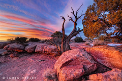 Evening Melody (James Neeley) Tags: sunset landscape utah deadhorsepoint canyonlands hdr 5xp jamesneeley flickr24