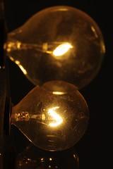 Dusty Bulbs 1 of 2 (iluvgadgets) Tags: macro pentaxk200d sigma70mmf28exdgmacrolens twittographers