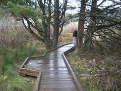 Boardwalk (A.C. Hobbs) Tags: oregon bridges oregoncoast yachats lincolncounty oregoncoasttrail