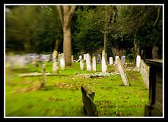 Graveyard (veggiesosage) Tags: graveyard lensbaby cemetary peterborough gx20 aficionados