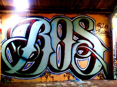 (JuanCarlosx2) Tags: bos hufer