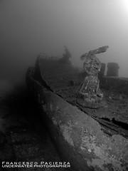 Wreck KT12, the gun - 1186 (Francesco Pacienza - Getty Images Contributor) Tags: light shadow sea bw white black nikon mare underwater mysterious wrecks relitto subacquea