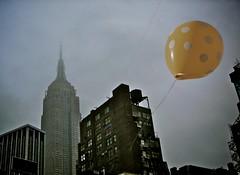 Midtown Manhattan, NY by Longland -