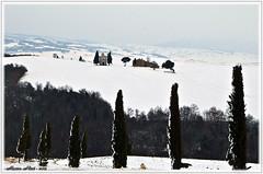 ''VITALETA'' ... A CLASSIC IN THE SNOW (mauro855) Tags: italia neve siena toscana valdorcia paesaggi 2012 panorami supershot nikond60 squiricodorcia abigfave mauronizzi magicavalle