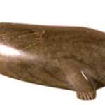 "<b>Seal</b><br/> Markusie Eetok (1960-) ""Seal"" Stone, ca. 1970's LFAC #1994:01:24<a href=""http://farm8.static.flickr.com/7158/6852408791_cc636cf276_o.jpg"" title=""High res"">∝</a>"