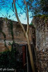 DSC_0115 (antomatto) Tags: centro case ricordi medievale fantasma paesaggio benevento passato vecchio storico vecchia desolazione paese apice casrello paesefantasma diroccate castellomedievale paesevecchio casediroccate apicevecchia storiacentrostorico