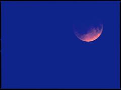 The ying and yang moon (Mister Blur) Tags: moon analog eclipse blood aperture nikon gracias luna balance lunar roja cerati yingandyang yucatan graciastotales moonlove d7100 merida mexico fragmentosdeluz amorbajolamismaluna