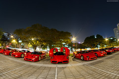 Highlight of the night (BLACKFOXPHOTOGRAPHY) Tags: b red horse black sexy speed amazing eyes singapore asia dino extreme ale ferrari bull fisheye exotic american e enzo audi edition stable supercar ef abt aston amg supercars combo f355 v12 exo blackfoxphotography exoticars aventador alexpenfold effspot v12khan sathyamelvani