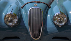Blues With A Look (AnyMotion) Tags: auto travel detail face car germany reisen gesicht hamburg oldtimer headlight bonnet 6d 2016 scheinwerfer motorhaube anymotion khlergrill radiatorgrille mondayface elbberg hamburgimpressions canoneos6d jaguarxk120fhc