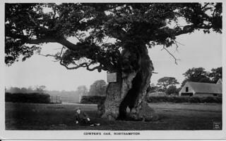 Cowper's Oak, Northamptonshire c.1918