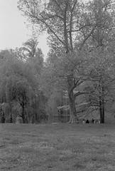 2016-05-23-0001-21.jpg (frankvacinphotography) Tags: centralpark