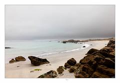Jardin Japonais. (armandbrignoli) Tags: bretagne rivage paysage mer plage océan côte eau sable beach landscape sea sky cloud canon 5d2