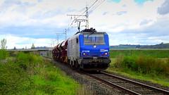 Train RégioRail FRET - Venerque-le-Vernet (Voie du Midi) Tags: fret sncf talc ariège occitanie luzenac regiorail régiorail