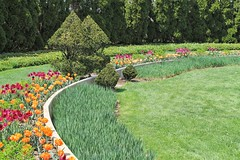 Ladew Topiary Gardens (karma (Karen)) Tags: flowers gardens topiary shadows tulips maryland bushes monkton lawns hedges ladewtopiarygardens 4spring nrhp cmwdgreen harfordco