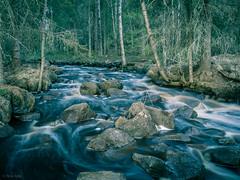 Pihlajakankaantie's rapid on evening (LuonnonKuvaaja) Tags: nature water creek forest finland river evening spring rocks may rapid raahe pattijoki ylip lasikangas pihlajakankaantie