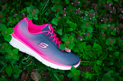 BUTY SKECHERS EQUALIZER (cliffsport.pl) Tags: pink green grass shoes running buty sketchers equalizer r sportowe trenning cliffsport