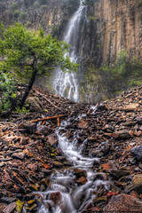 Palisade Falls  ~Explore~ (Tom Lussier Photography) Tags: usa mountain tree water fog forest landscape waterfall nikon montana nationalforest rockymountains tomlussier tpslandscape