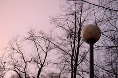 Petersburg rainy winter (T4_photo) Tags: trees sky urban lamp evening nikon russia rainy saintpetersburg 35 dx         d7000