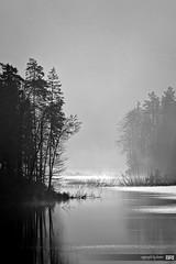 foggy_morning_on_lake - explored (alamond) Tags: morning blackandwhite bw lake fog canon 7d topaz llens ef70300mmf456lisusm