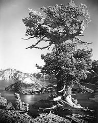 Lone Sentinel, Crater Lake National Park