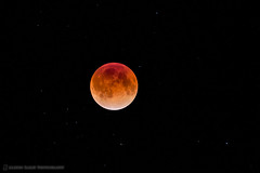 Dec 2011 Lunar Eclipse (Martin Bailey) Tags: sky moon black japan stars tokyo eclipse astrophotography jp lunar lunareclipse mbp dec2011