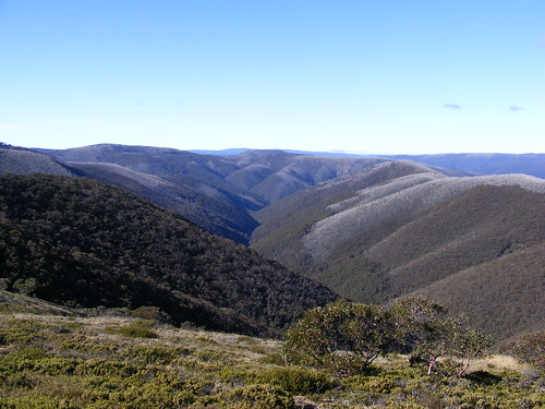 Picture from Mt. Hotham, Victoria
