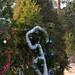 360_Trees_2011_042