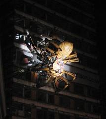 La Machine (lizgould123) Tags: liverpool spider arachnid giantspider capitalofculture2008 mechanicalspider lamachine laprincesse